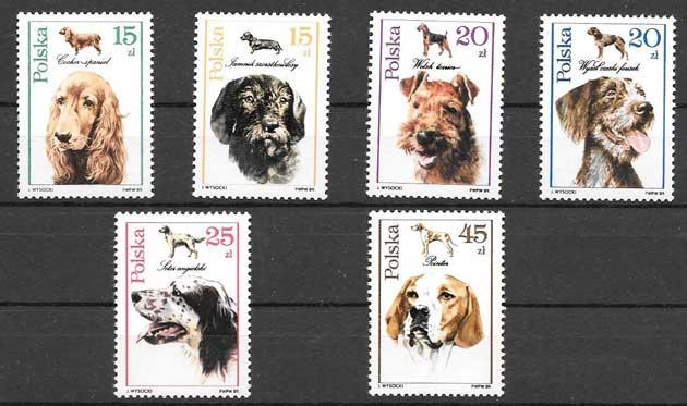 Estampilla razas de perros Polonia 1989