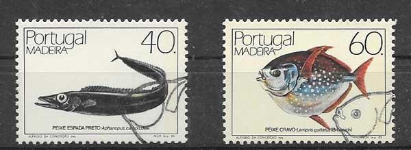 Sellos fauna marina de Madeira