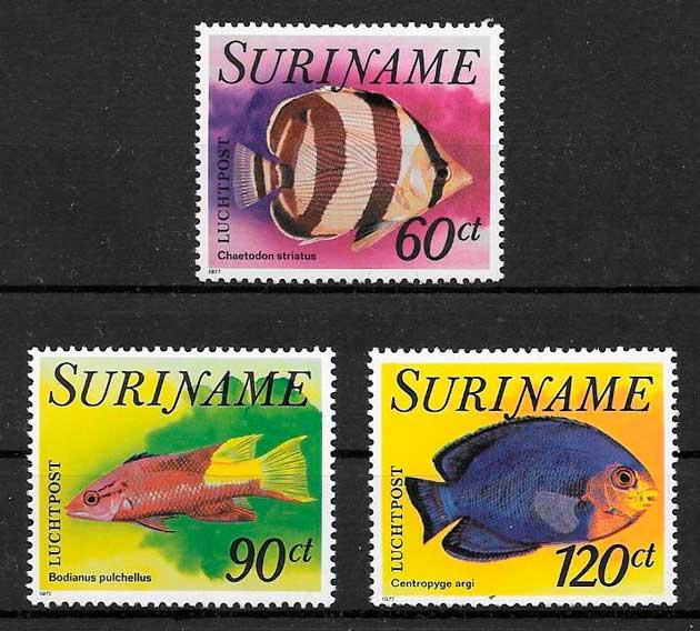 sellos fauna Surinam 1977