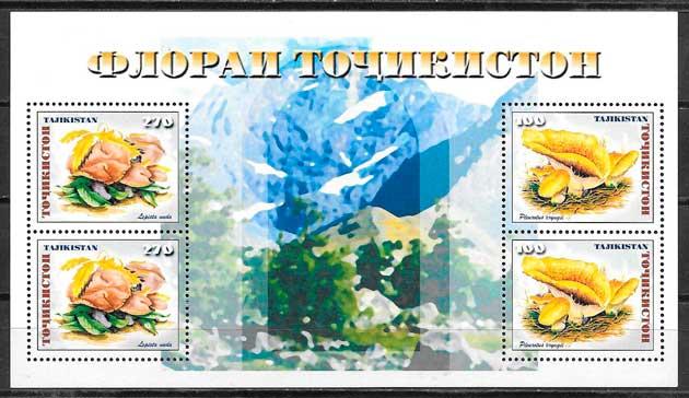 Tajikistan-1999-04-flora