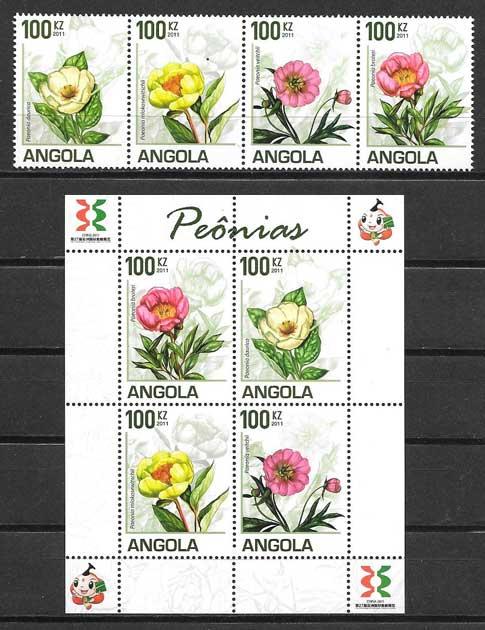 flores peonias de Angola