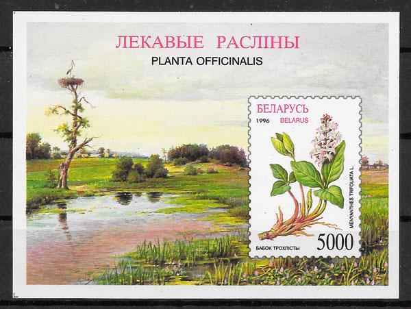 filatelia colección flora Bielorrusia 1996
