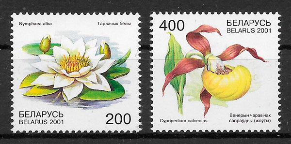 filatelia flora Bielorrusia 2001