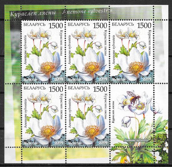 colección sellos flores Bielorrusia 2008