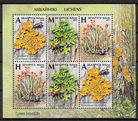 filatelia colección flora Bielorrusia 2019
