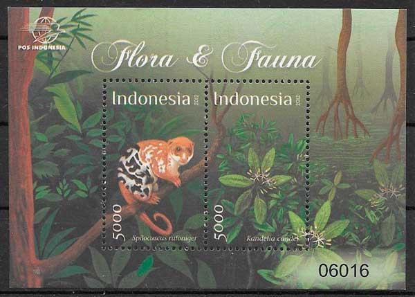 Indonesia-2012-02-fauna