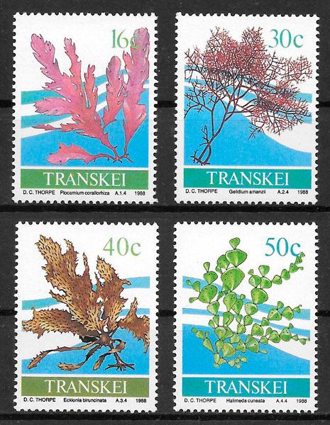 colección sellos flora Transkei 1988