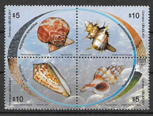 sellos fauna caracoles de mar