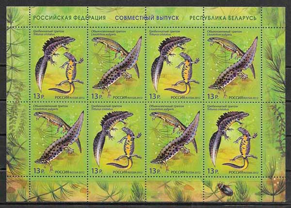 sellos fauna Rusia 2012