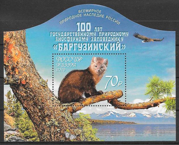 sellos fauna Rusia 2016