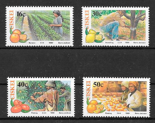 sellos frutas Ciskei 1988