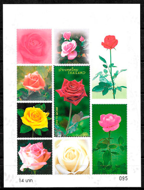 sellos rosas Tailandia