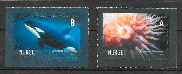 sellos fauna Noruega 2005
