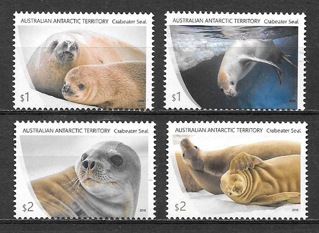 sellos fauna Australia- Territorio Antártico 2018