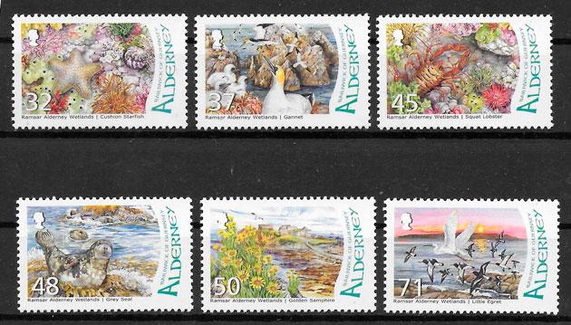 selos fauna Alderney 2007