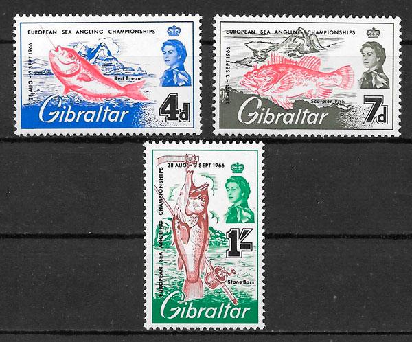 selos fauna Gibraltar 1966