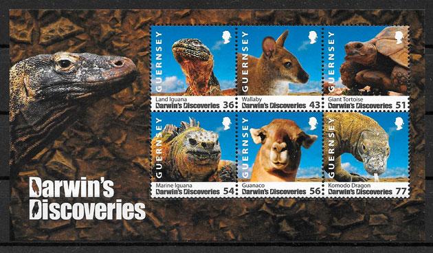 coleción sellos fauna GUERNSEY 2009