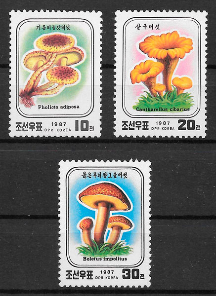 filatelia setas Corea del Norte 1987