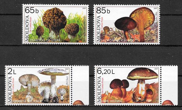 sellos setas Moldavia 2007