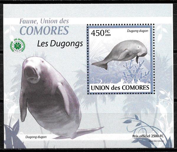 filatelia colección fauna Comores 2009