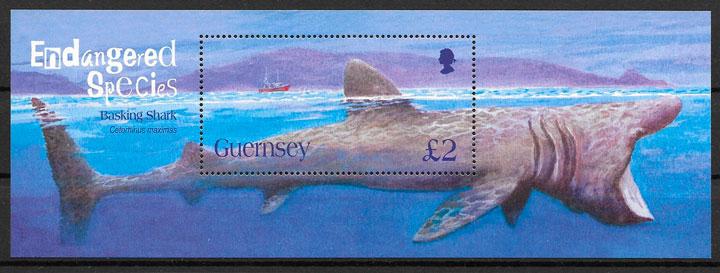 sellos fauna Guersey 2005